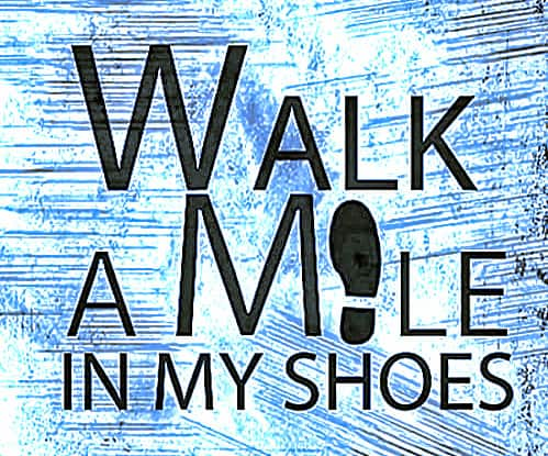 Walk a Mile in My Shoes by Lloyd Sherman