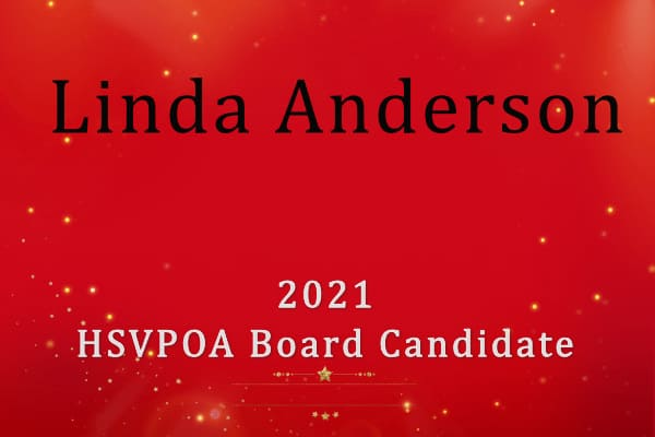 Linda Anderson Cover photo for 2021 election