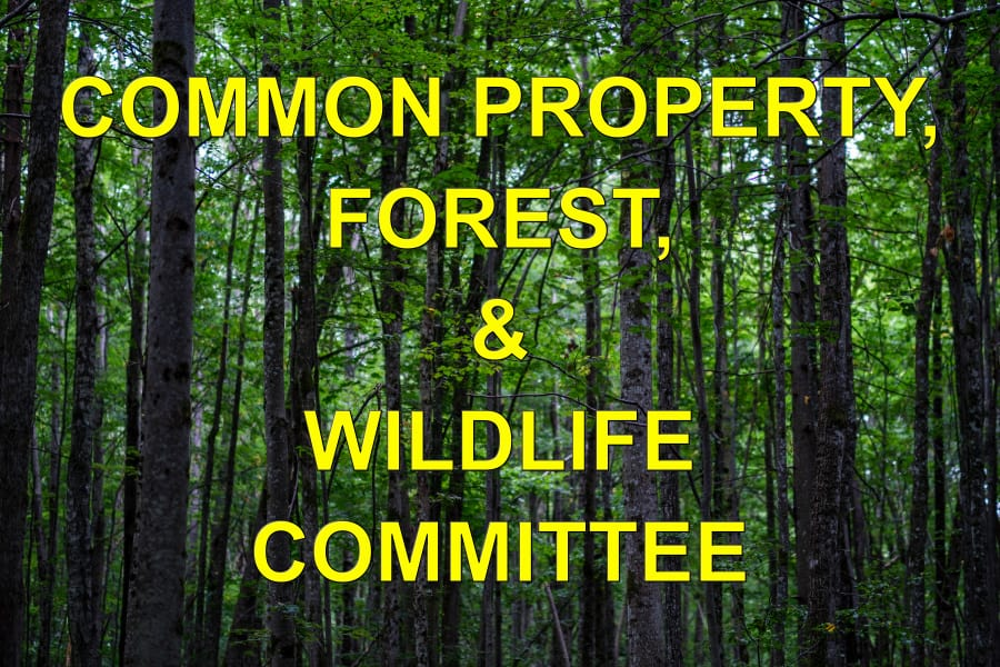 Hot Springs Village POA Common Property Forestry and Wildlife Committee June 26, 2021 Report to the Board
