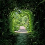 light at the end of the tunnel in hot springs village arkansas